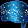 知識共有プラットフォーム Brain(ブレイン)とは何ぞや?